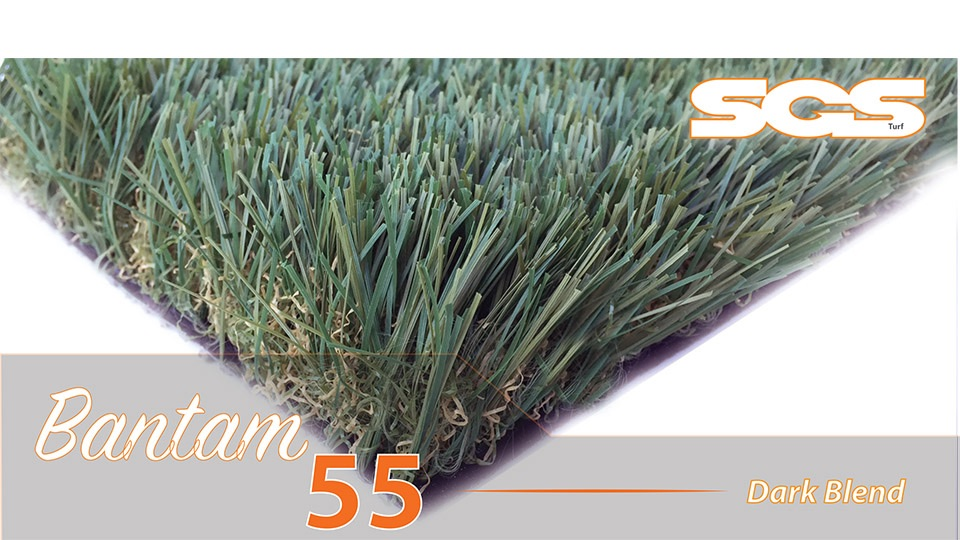 Bantam 55 Dark Blend by Synthetic Grass Superstore