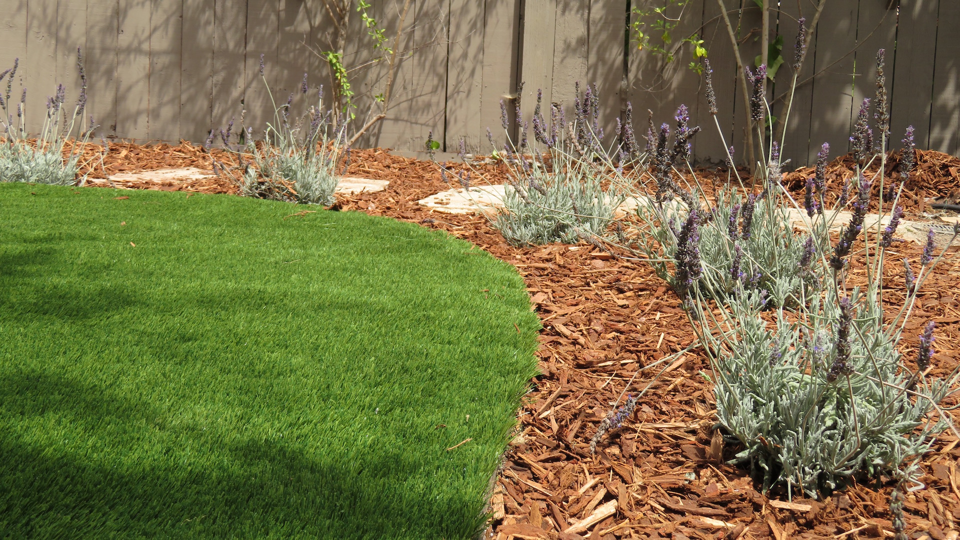 drop irrigation for low maintenance yards by EcoLawn Santa Barbara