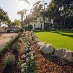 Planting by EcoLawn Santa Barbara
